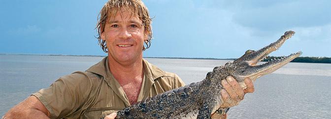 How Crocodile hunter Steve Irwin got killed by Stingray – Travel Buddies  Talk